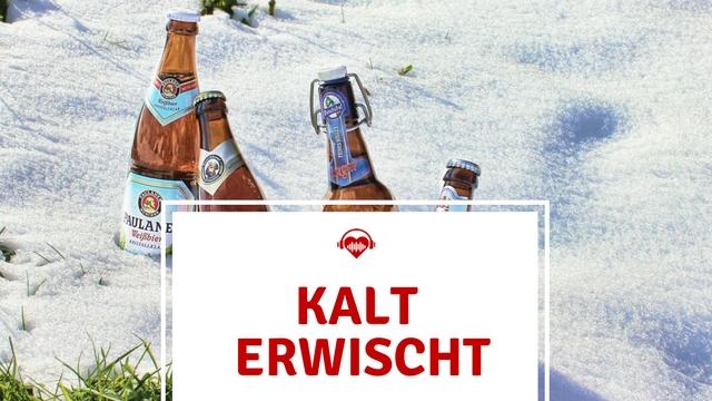 Festival Kühlbox kaltes Bier