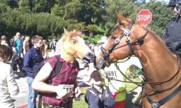 Die lustige Pferdemaske