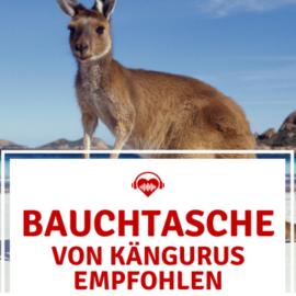 Festival Bauchtasche Känguru